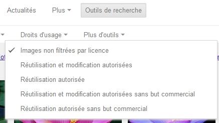 """Faites votre choix parmi les filtres (pour un blog pro, ce sera donc """"Réutilisation et modification autorisée"""" ou """"Réutilisation autorisée"""") !"""