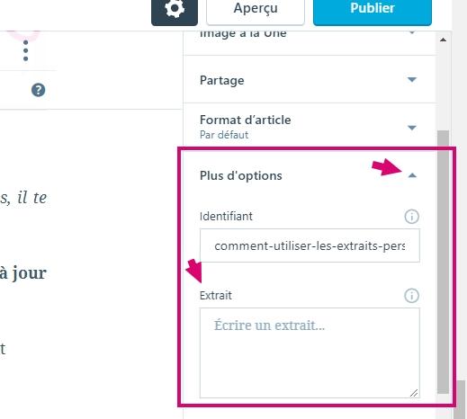 Trouver le champ Extrait personnalisé de WordPress dans la version améliorer de l'éditeur