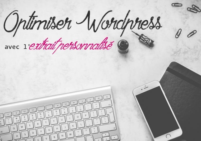 """L'usage du champ """"extrait personnalisé"""" de WordPress permet d'optimiser ton blog"""